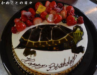 DSC_0494-cake.jpg