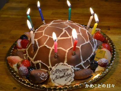 DSC_0675-cake.jpg