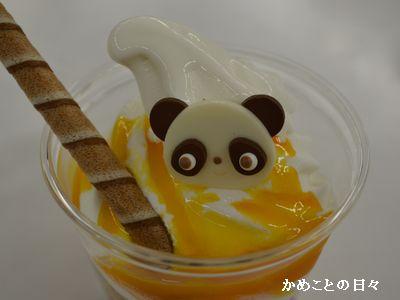 DSC_0780-panda.jpg