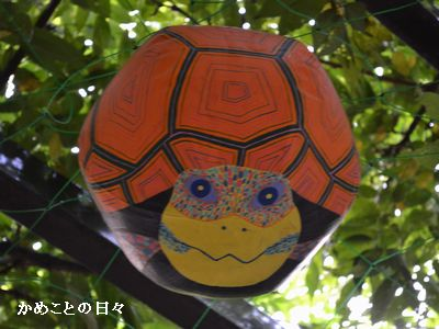DSC_0795-fusen2.jpg