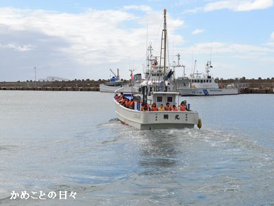 DSC_0835-ship.jpg