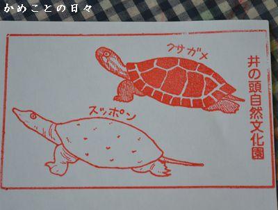 DSC_0968-stamp.jpg