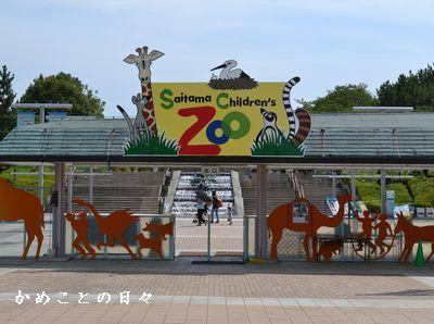 DSC_0978-zoo.jpg