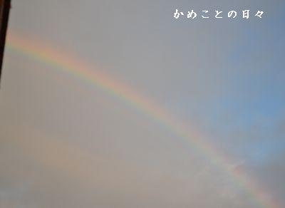 DSC_1002-rain.jpg