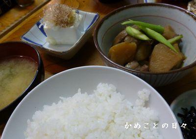 P1060865-lun.jpg