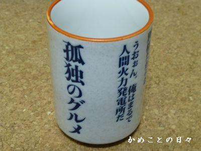 P1070091-yu.jpg