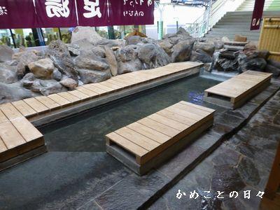P1070264ashiyu.jpg