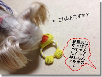 20130813007.jpg