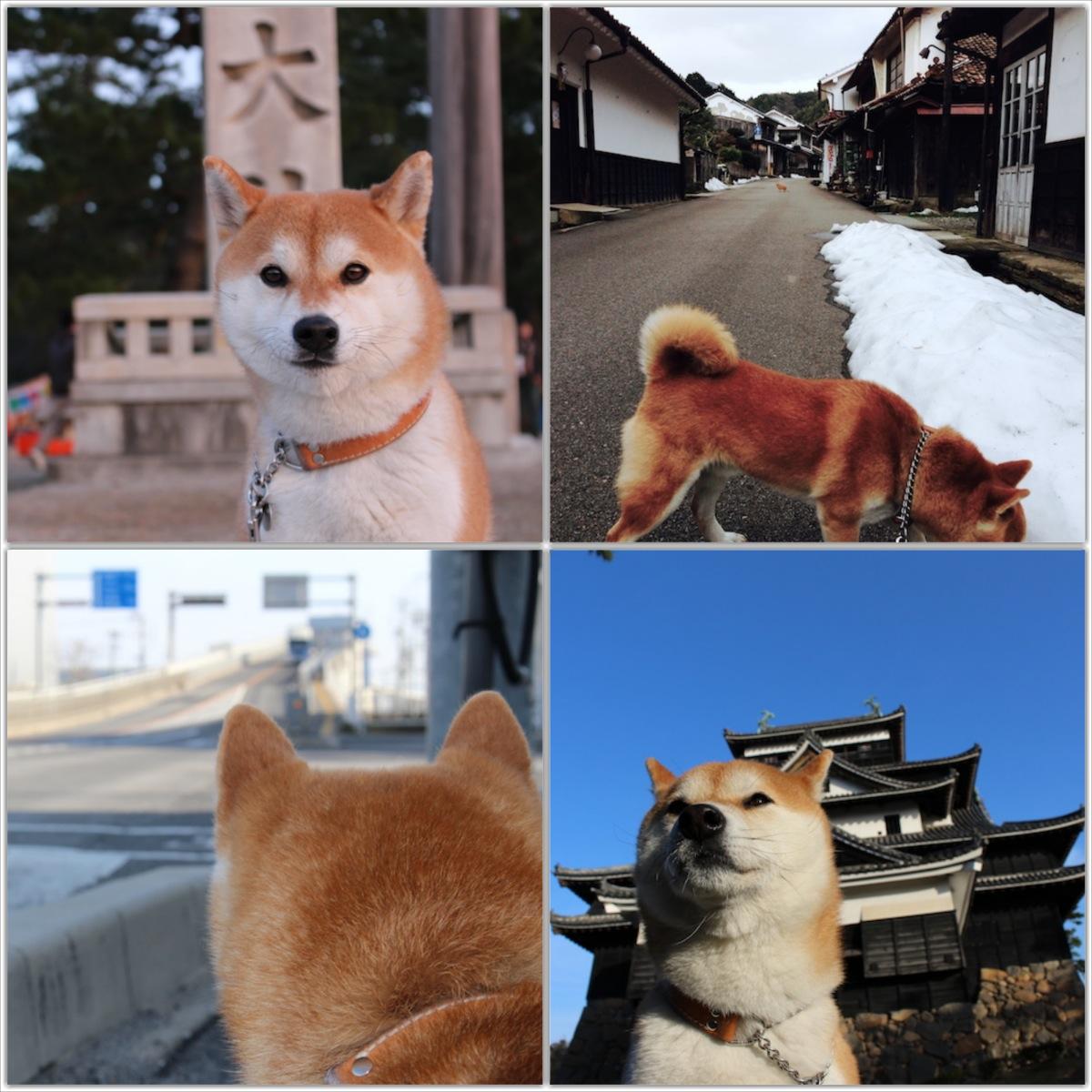 2014kankichi.jpg