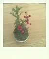 moblog_b146a713.jpg