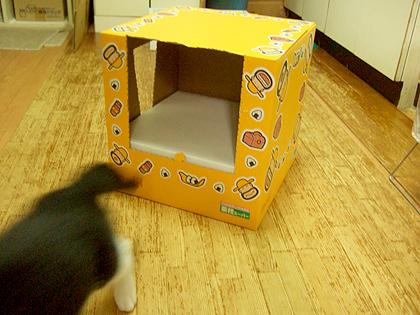 Meijiのカールおじさんのダンボール箱