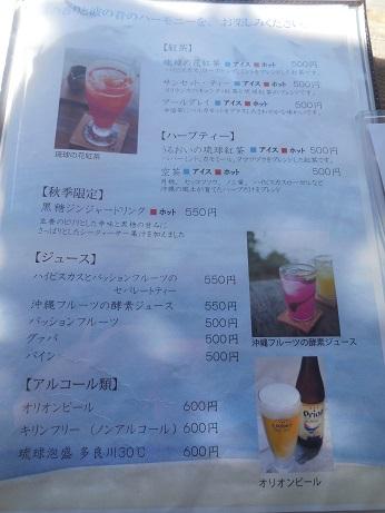 DSCN9872okinawa.jpg