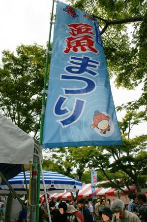 DSC02904加工金魚祭り