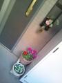 玄関のお花1