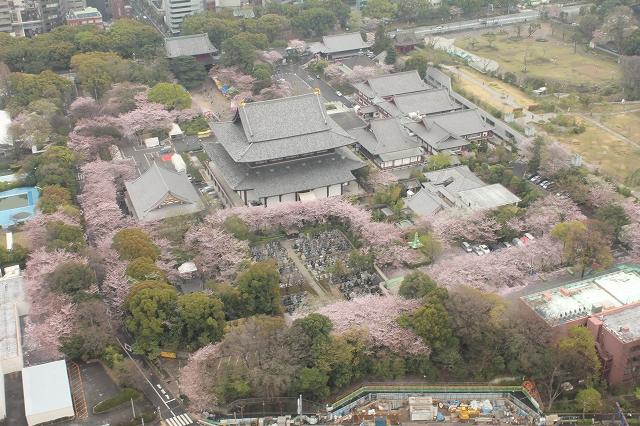ぱみゅぱみゅの寺