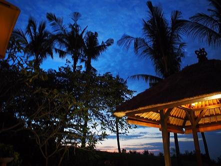 インドネシア22