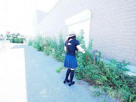 東金の草芝居01