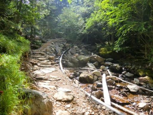 登山道はあちこち補修してます