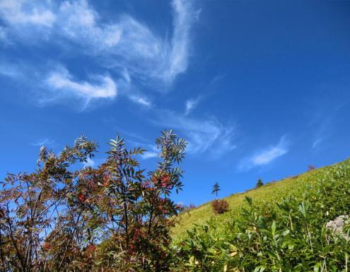 青空とすじ雲