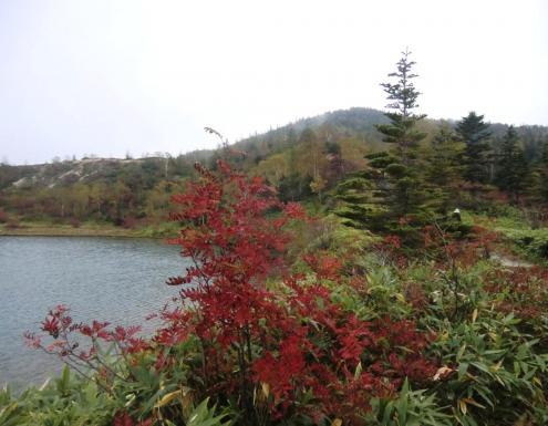 弓池と逢ノ峰