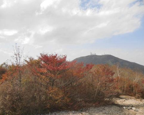 紅葉と地蔵岳