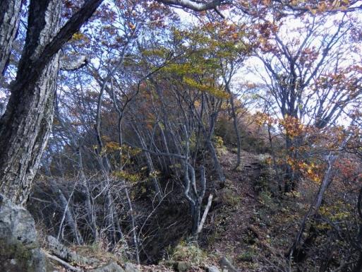 ヤセ尾根の向うに山頂