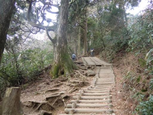 ひたすら階段