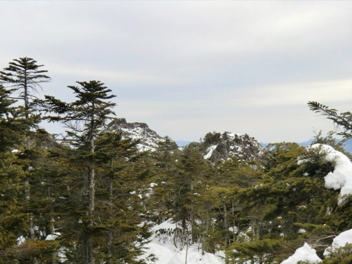 三ッ岳方向