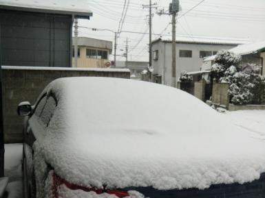 雪落とす前