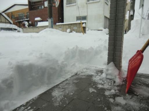 雪かき始めたけど