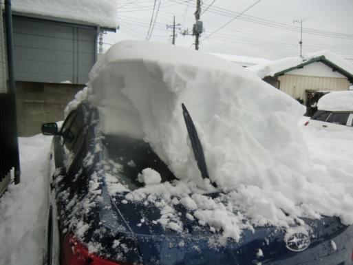 雪は落としても