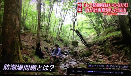 テレビ朝日防潮堤