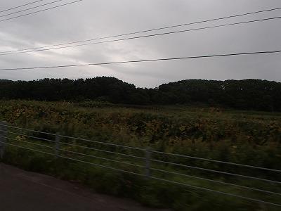 s-P9030382.jpg