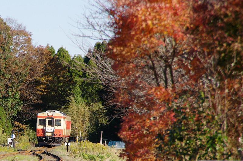 kuniyoshi1.jpg