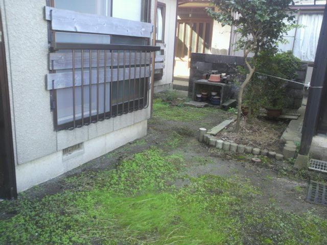 新潟 (2)