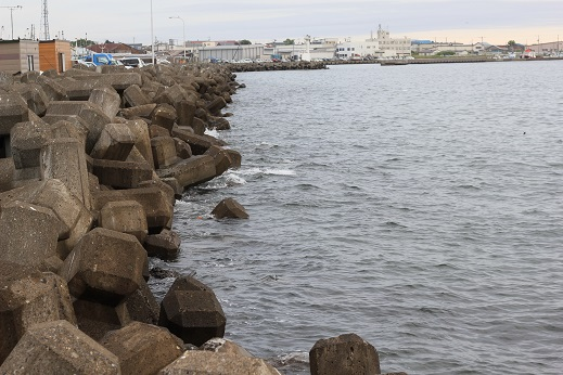 紋別漁港2