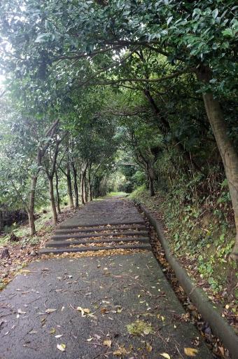 隠ヶ丘の参道