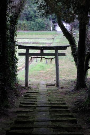 佐為神社の参道
