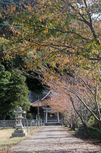 石見八幡宮の参道