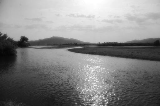 斐伊川の水面