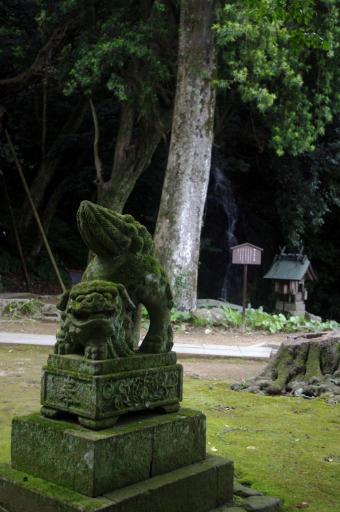 御三社の前の狛ワンコ