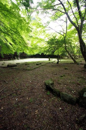 等樹院跡の亀島