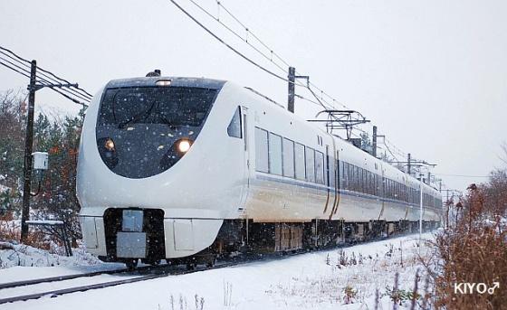 201112d2.jpg