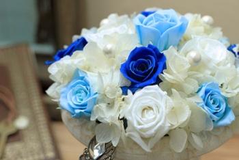 bluejewel-t02.jpg