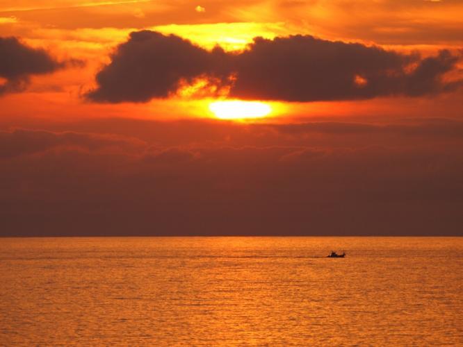 夕陽にズーム
