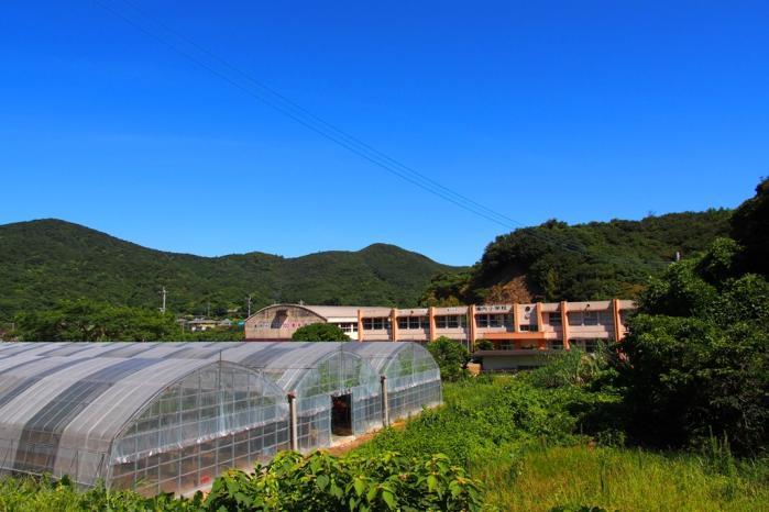 浦内小学校の隣にパッションハウス