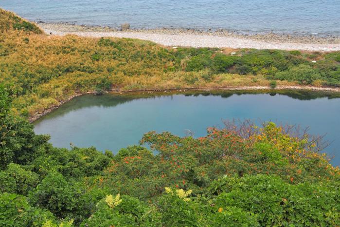 秋のなまこ池