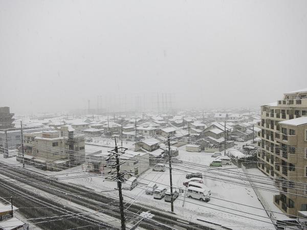 雪14.2.8④