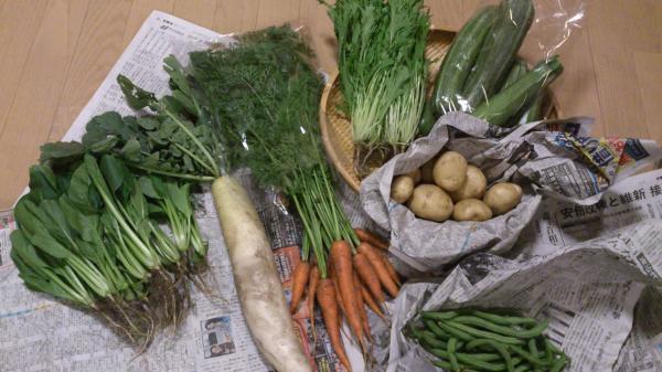 風の谷さんの野菜