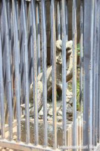 北野神社(練馬区谷原)11